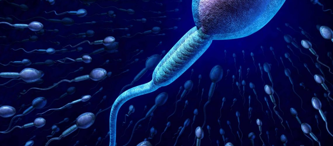Human sperm cell and male fertility concept with a close up of microscopic spermatozoa cells swimming towards an elusive female egg as a medical reproduction symbol of genetic information transfer and conception.